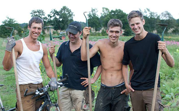 Organic Farming and Garden Help in Germany, Europe